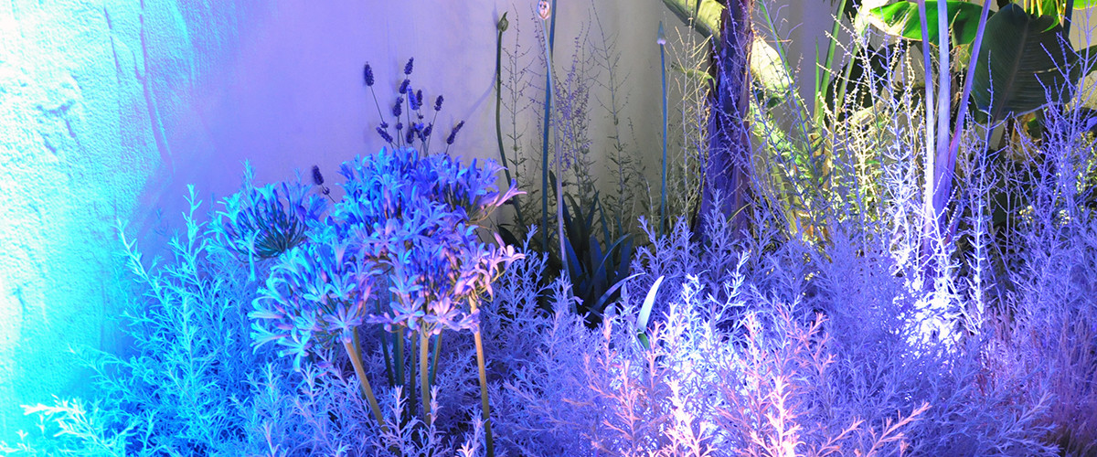 Floricoltura Loi - allestimento floreale marino
