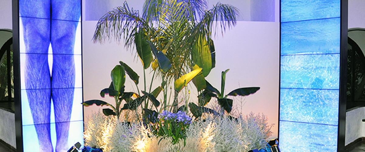 Floricoltura Loi - allestimento floreale convegno